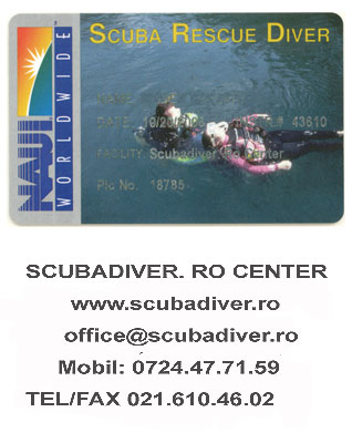 NAUI TABLE DIVE